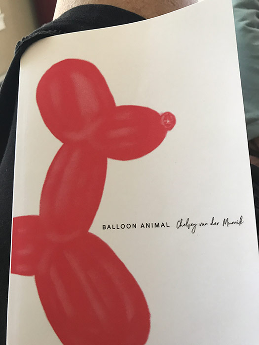 Balloon Animal book jacket